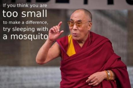 Dalai Lama on Twitter