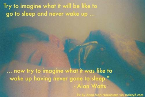 Alan_Watts_Slepp